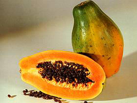Sunrise Papaya